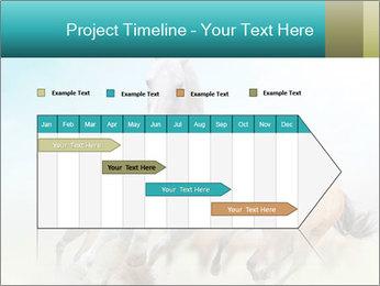 Horses in dust PowerPoint Template - Slide 25