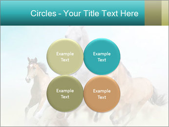 Horses in dust PowerPoint Template - Slide 38