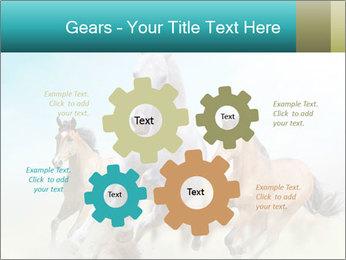 Horses in dust PowerPoint Template - Slide 47