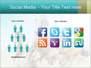Horses in dust PowerPoint Template - Slide 5