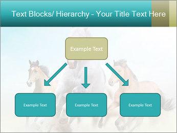 Horses in dust PowerPoint Template - Slide 69