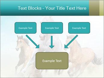 Horses in dust PowerPoint Template - Slide 70