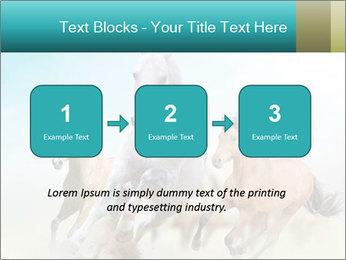 Horses in dust PowerPoint Template - Slide 71