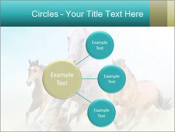 Horses in dust PowerPoint Template - Slide 79