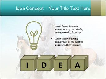 Horses in dust PowerPoint Template - Slide 80