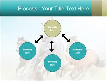 Horses in dust PowerPoint Template - Slide 91