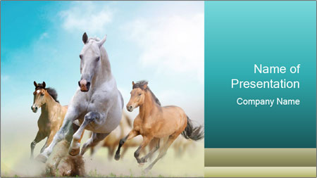 Horses in dust PowerPoint Template