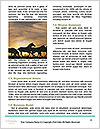 0000092747 Word Template - Page 4