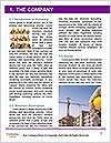 0000092748 Word Template - Page 3
