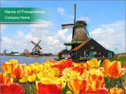 Traditional Dutch windmills PowerPoint Templates