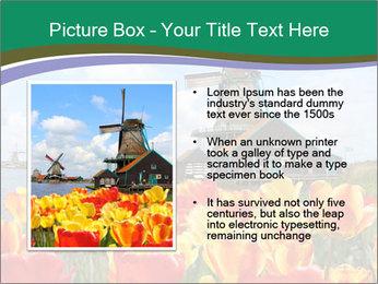 Traditional Dutch windmills PowerPoint Template - Slide 13