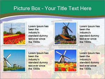 Traditional Dutch windmills PowerPoint Template - Slide 14