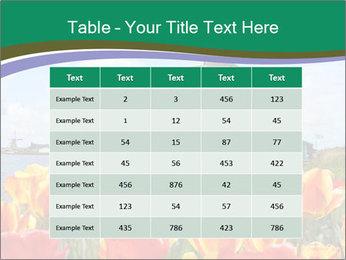 Traditional Dutch windmills PowerPoint Template - Slide 55