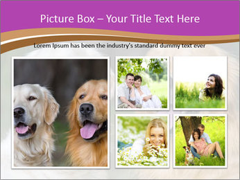Dogs playing in the meadow PowerPoint Templates - Slide 19