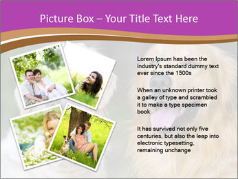 Dogs playing in the meadow PowerPoint Templates - Slide 23