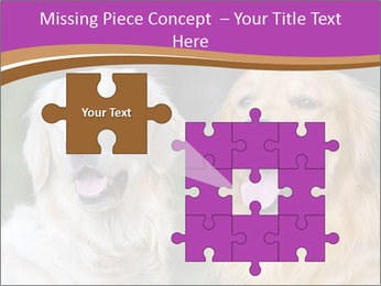 Dogs playing in the meadow PowerPoint Templates - Slide 45