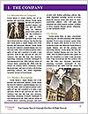 0000092756 Word Template - Page 3