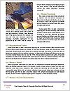0000092756 Word Template - Page 4