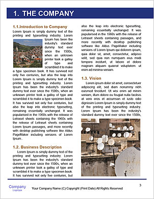 0000092758 Word Template - Page 3