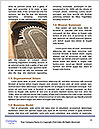 0000092758 Word Template - Page 4
