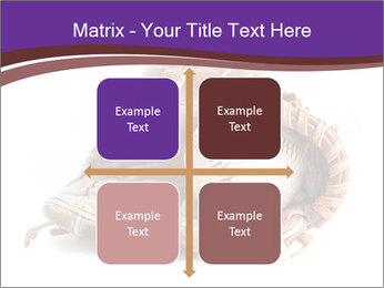 Baseball glove PowerPoint Template - Slide 37