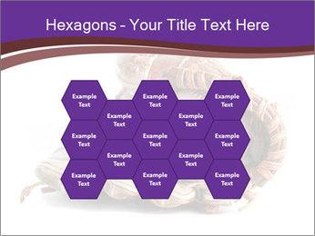 Baseball glove PowerPoint Template - Slide 44