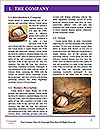 0000092761 Word Templates - Page 3