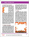 0000092762 Word Template - Page 3