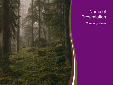 Trees in forest PowerPoint Template