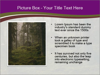 Trees in forest PowerPoint Template - Slide 13