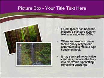 Trees in forest PowerPoint Template - Slide 20
