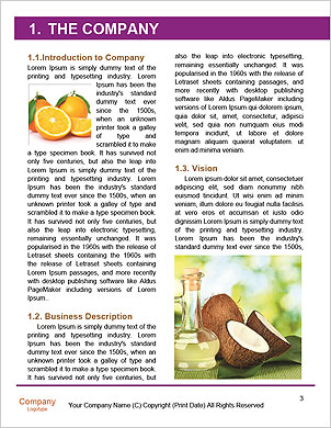 0000092769 Word Template - Page 3