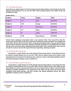 0000092770 Word Template - Page 9