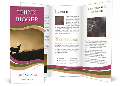0000092771 Brochure Template