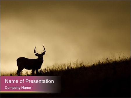 Sunset PowerPoint Template