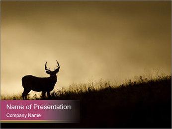 Sunset PowerPoint Template - Slide 1