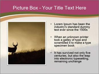 Sunset PowerPoint Template - Slide 13