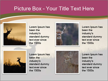 Sunset PowerPoint Template - Slide 14