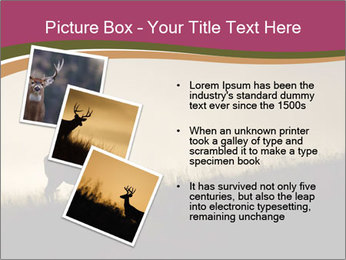 Sunset PowerPoint Template - Slide 17