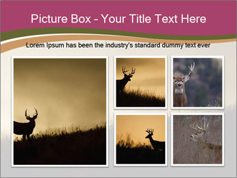Sunset PowerPoint Template - Slide 19