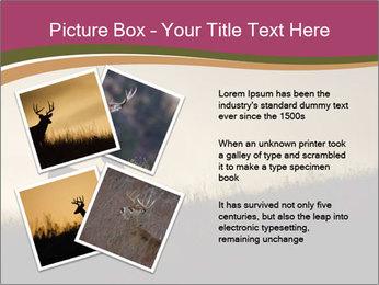 Sunset PowerPoint Template - Slide 23