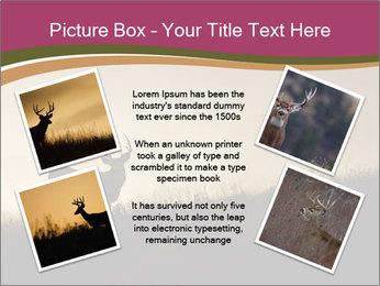 Sunset PowerPoint Template - Slide 24