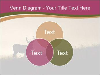 Sunset PowerPoint Template - Slide 33