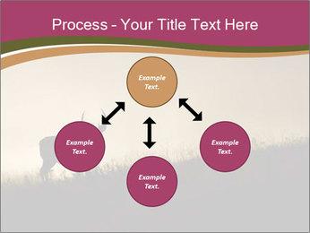 Sunset PowerPoint Template - Slide 91