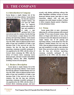 0000092771 Word Template - Page 3