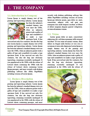 0000092775 Word Template - Page 3