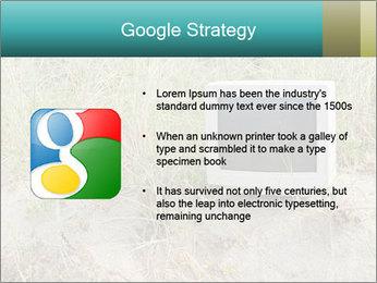 Computer screen PowerPoint Template - Slide 10