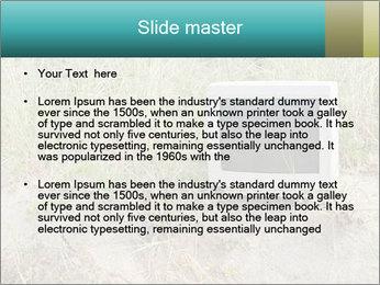 Computer screen PowerPoint Template - Slide 2