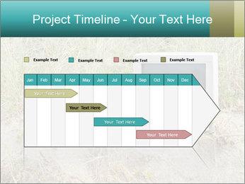 Computer screen PowerPoint Template - Slide 25
