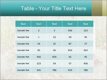 Computer screen PowerPoint Template - Slide 55